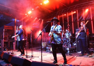 Red Deer Festival: Fire & Whistle Theory